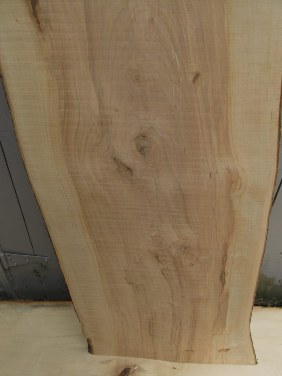 closeup of bottom grain - Apple wood live edge slab for sale 15 wide by 72 inches long