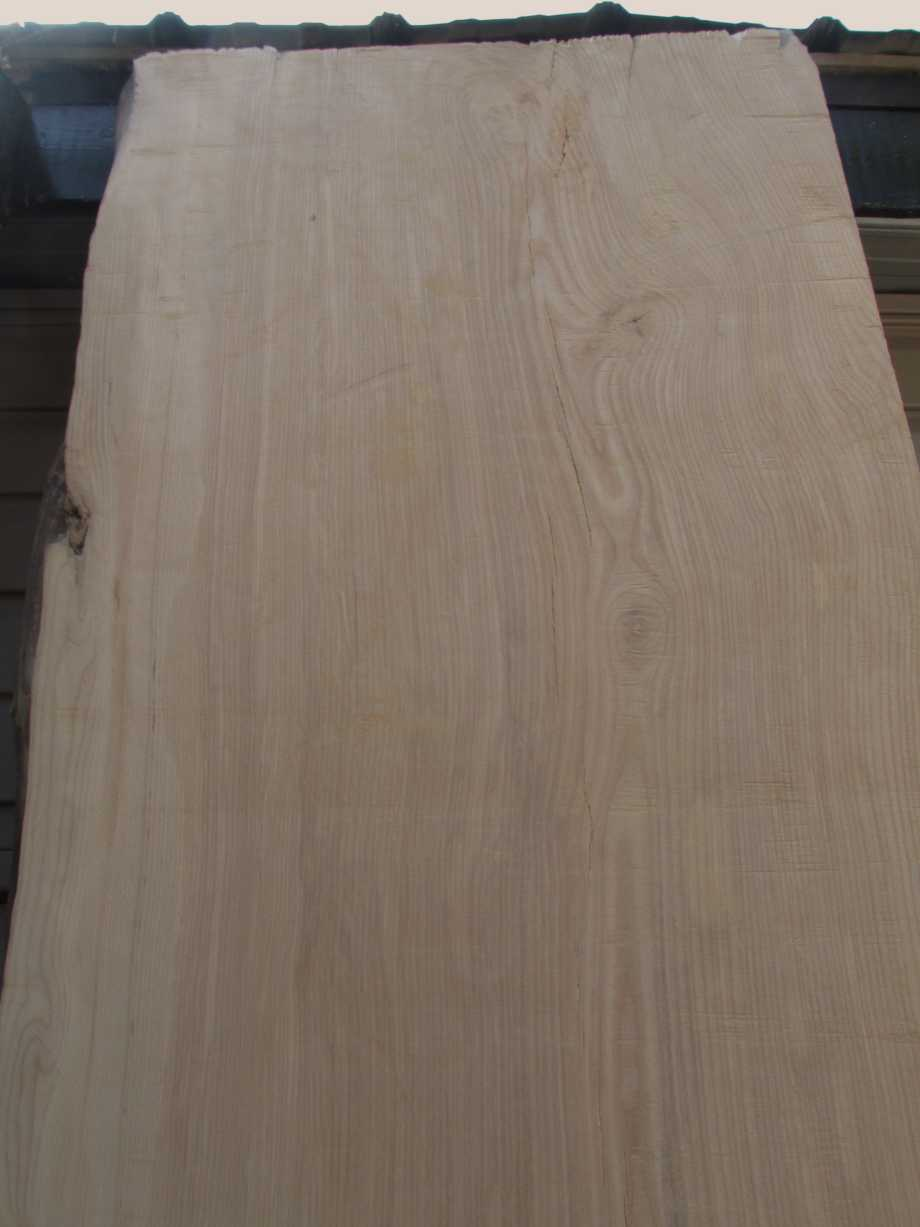 Closeup of grain top section - Ash wood live edge slab for sale 28 wide by 99 inches long