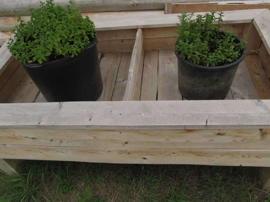 Top view of solid cedar wood planter box made from hand milled Ontario cedar. Planter has two compartments and is ideal for backyard or balcony.