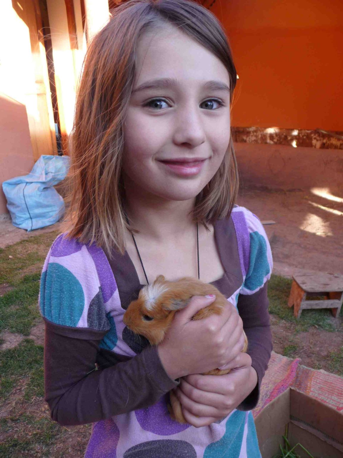 child guinea pig Peru travel