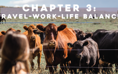 Chapter 3: Travel-Work-Life Balance