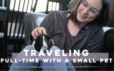 Traveling Full-time with a Small Pet – RVing with our Guinea Pig