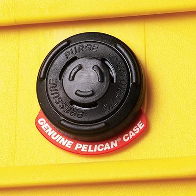 Pelican Protector 1120 Case