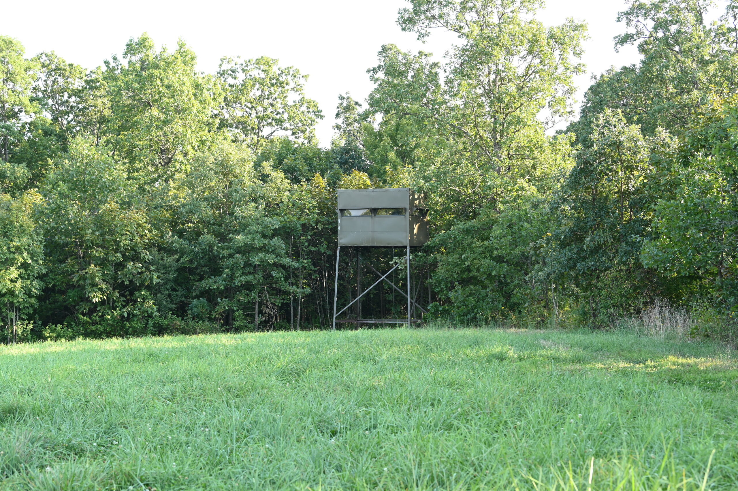 Missouri Deer Hunting Blind