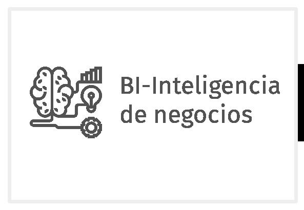 Bi-Inteligencia de negocios