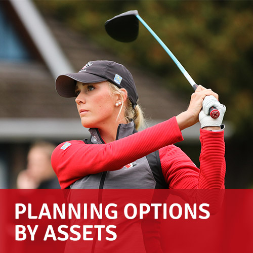 Planning options by Assets