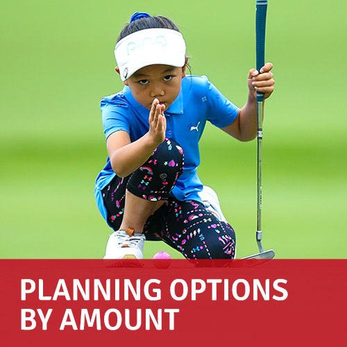 Planning options by amount