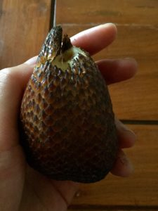 Snake fruit | Exotic tropical fruit | Indonesia | South east asia