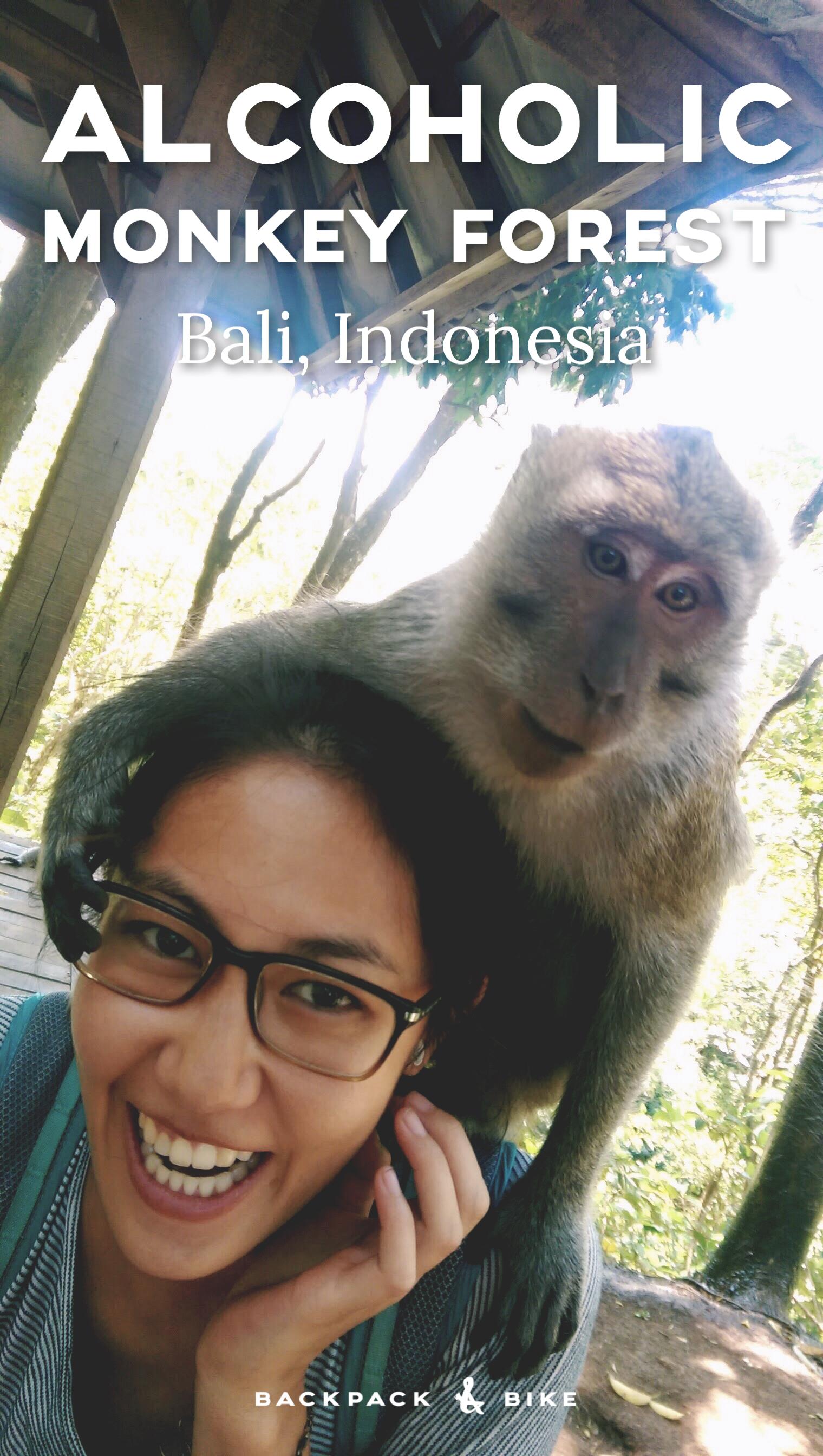 Monkey Forest Ubud Bali