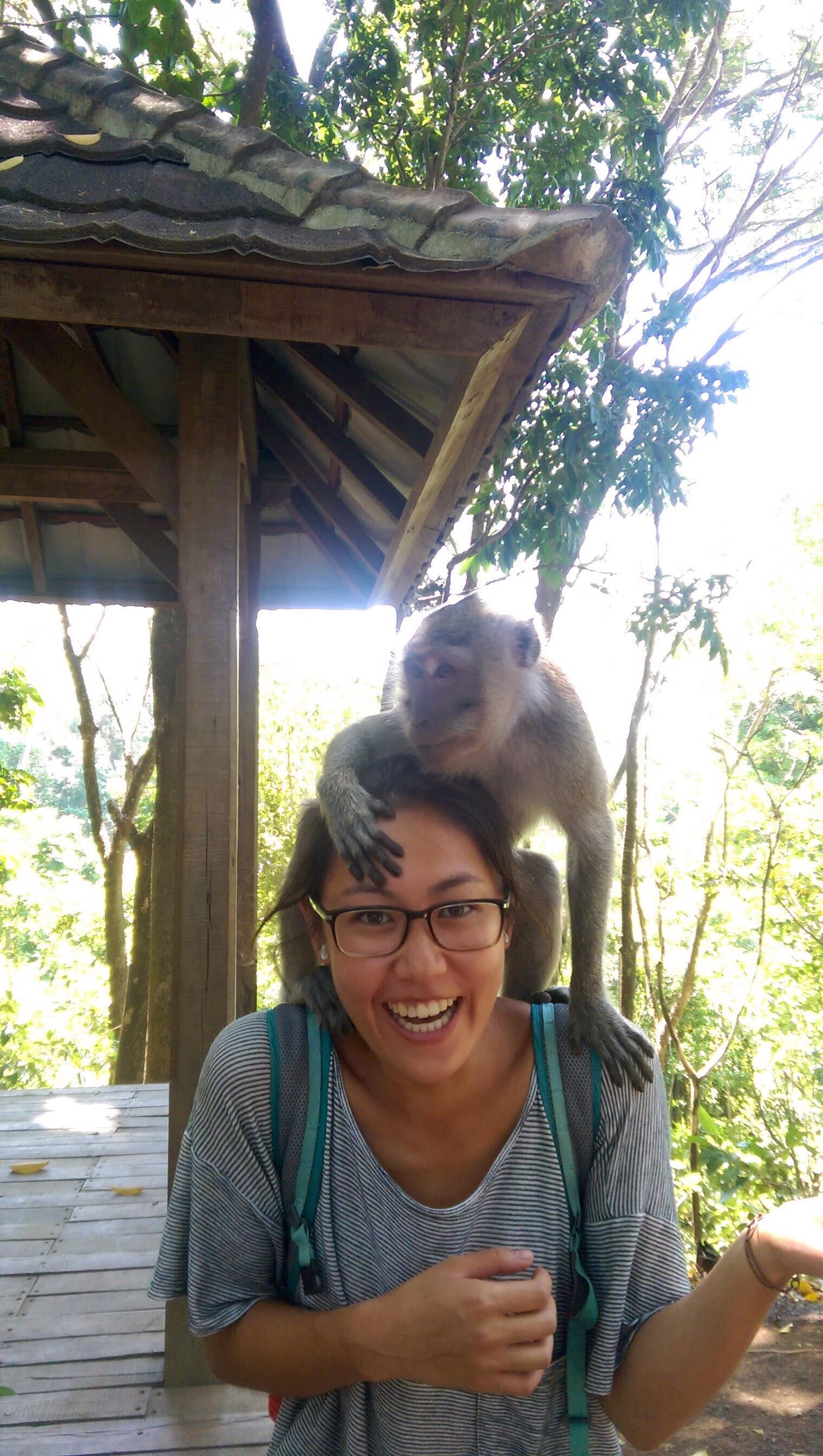 Monkey Forest Bali