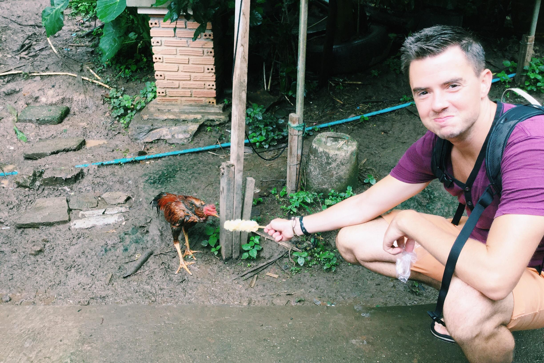 chiang mai chicken