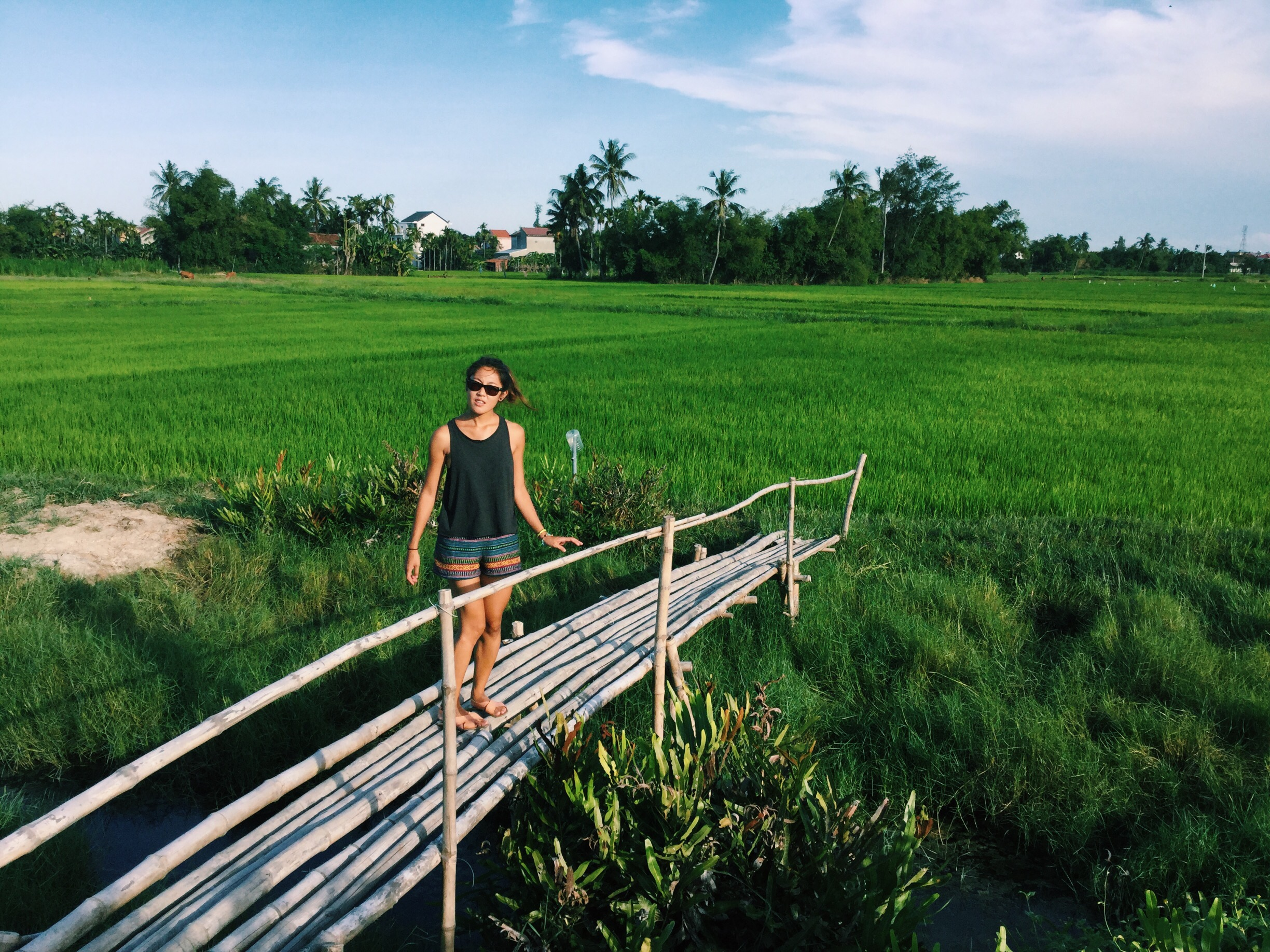 hoi an countryside