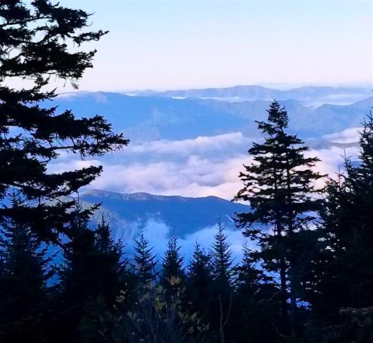 View from 1st part of Clingman's Dome trail