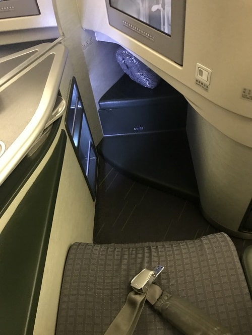 View of my EVA business seat