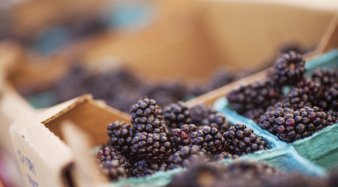 Fresh Marionberries at Farmers Markets