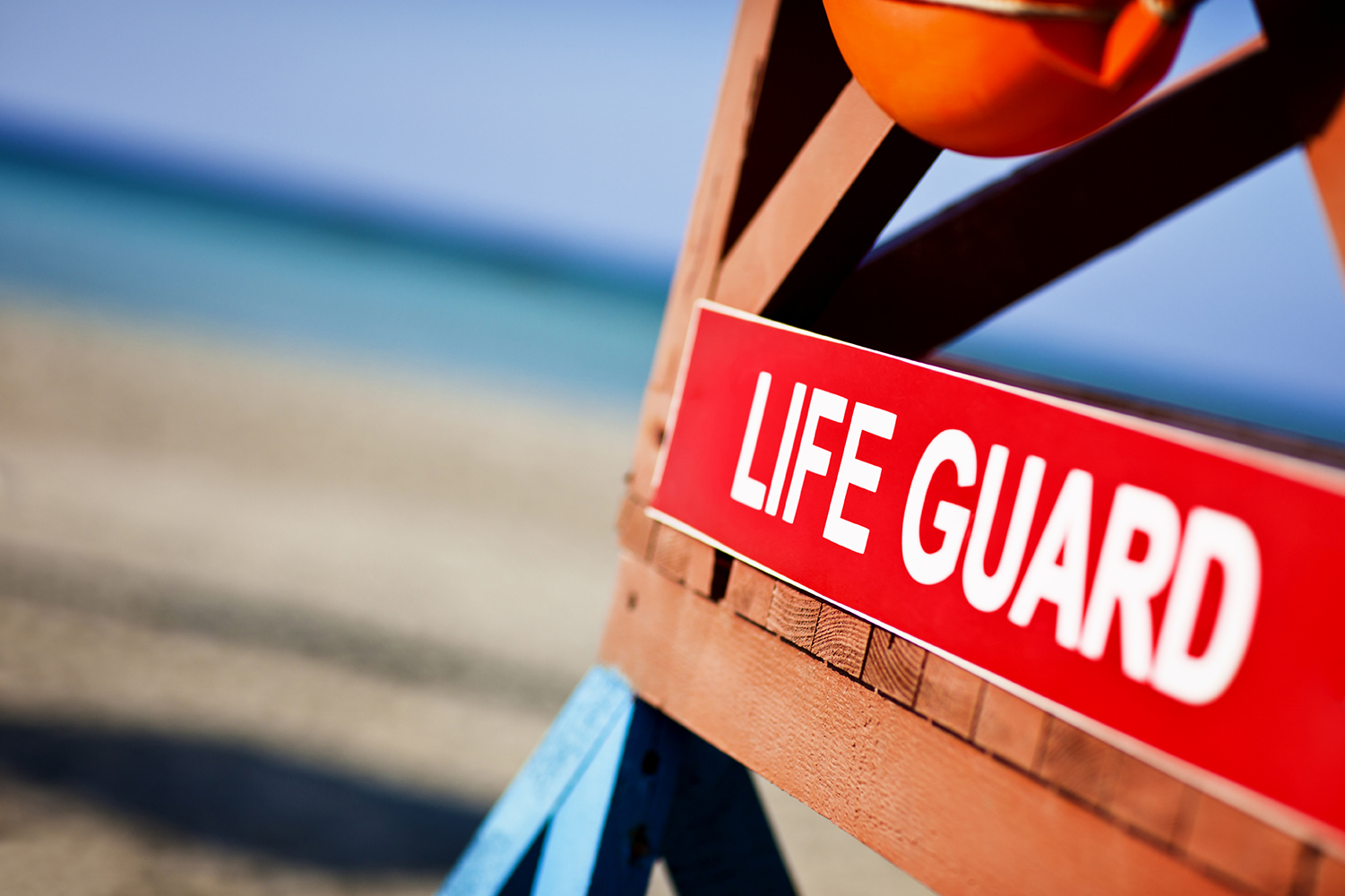 Learning to Lifeguard