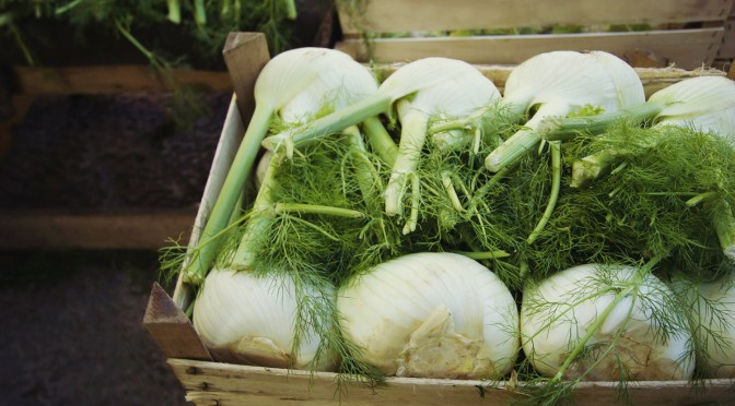 Abundant Fennel Recipes