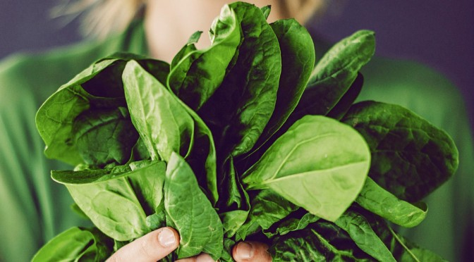 Cooking with Fresh Spinach Recipes