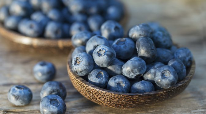 Fresh Garden Blueberry Recipes