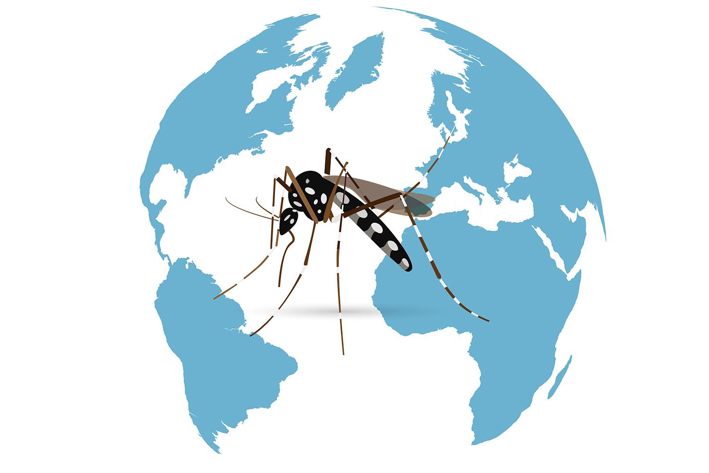 Preventing Zika Virus