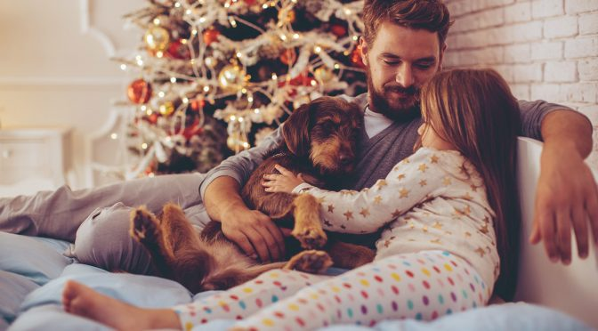 Protecting Your Pets for Christmas