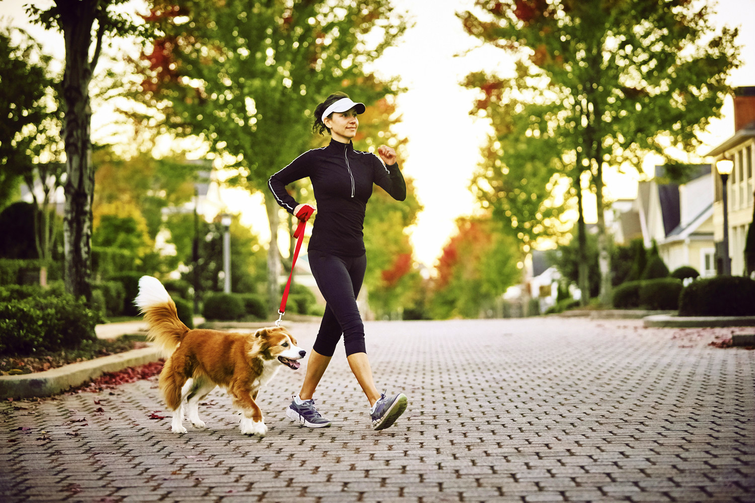 Benefits of Moderate Exercise