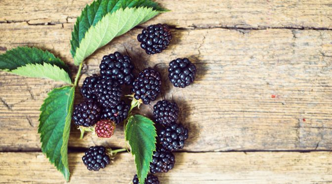Healthy Blackberry Recipes