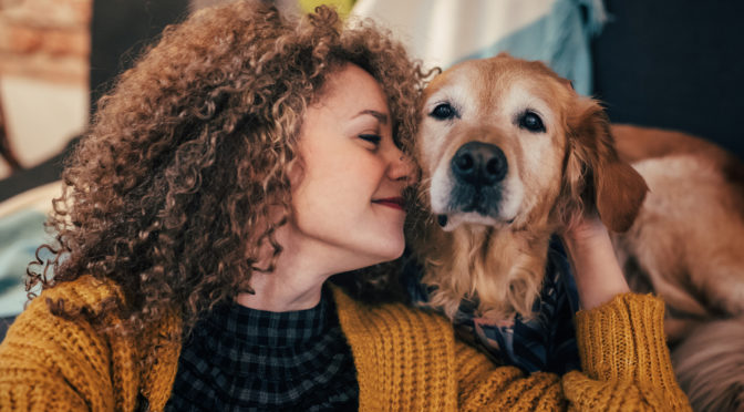 Care for Pets in Holidays and Hard Times