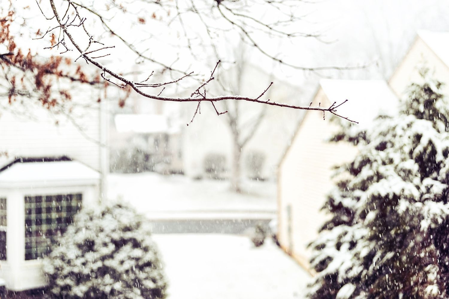 Seasonal Affective Disorder and Winter