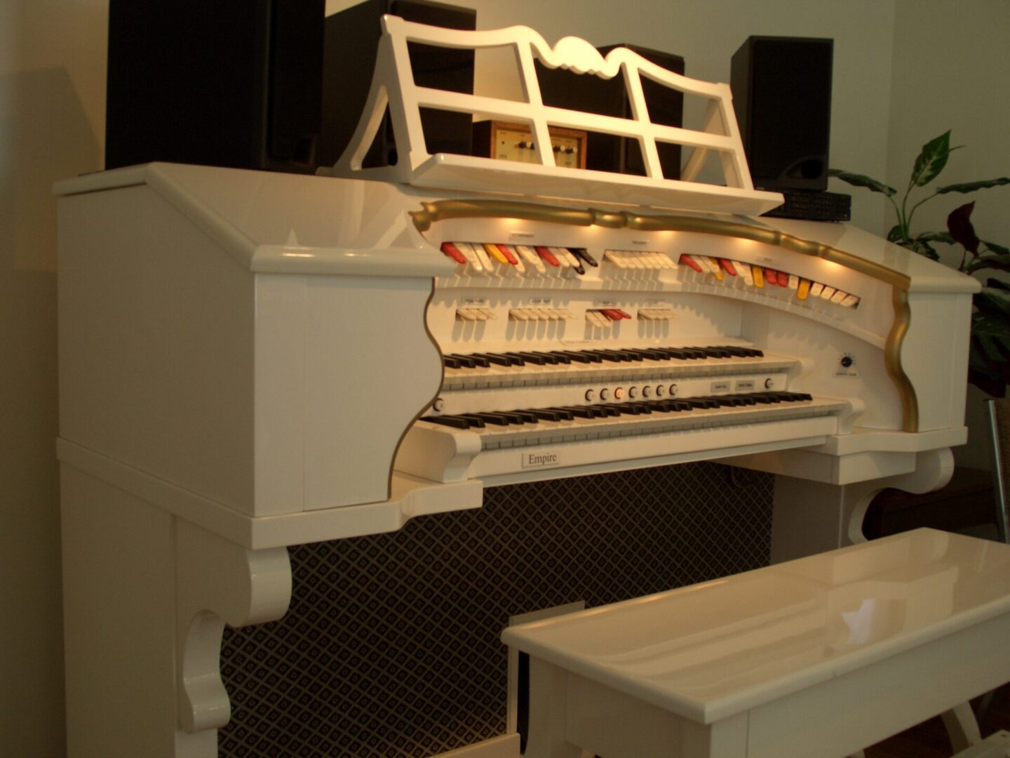 Viscount 'Empire' Theater Organ