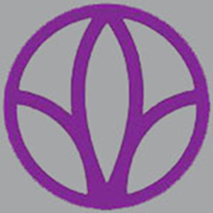 logo dark grey 300