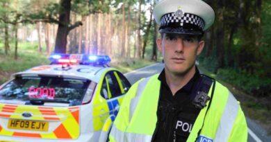 ερωμενη αστυνομικος 2