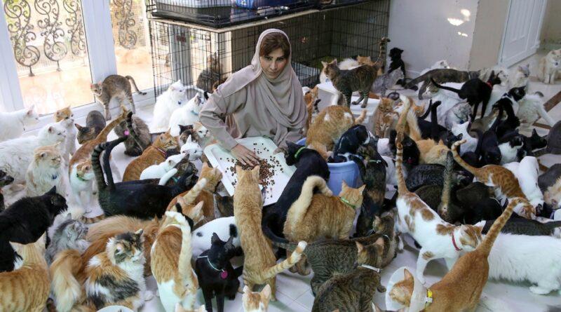 maryam balushi mujer dedica cuidar 1