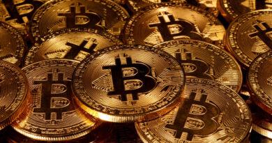 Bitcoin superó por primera vez en su historia los 30.000 dólares