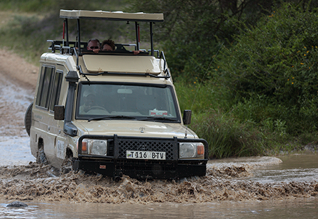 Good Earth Tours and Safaris