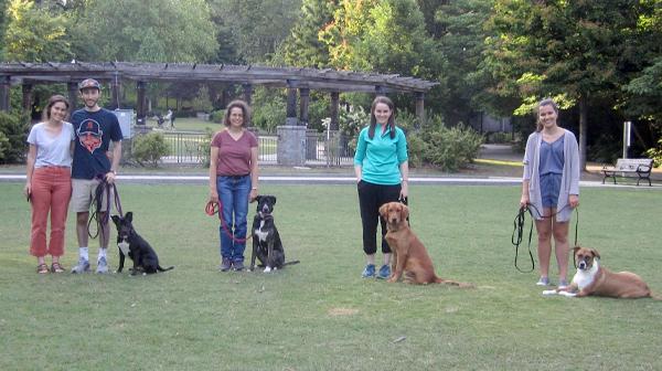 Atlanta Basic Dog Training Class