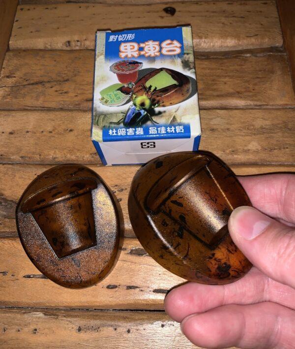 beetle jelly holder