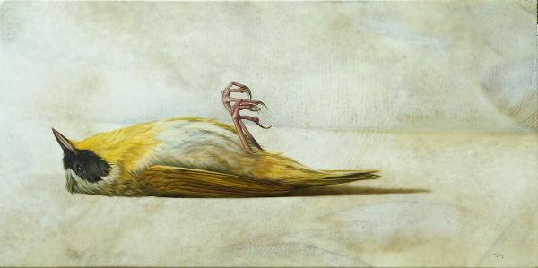 Flightless Warbler | oil on goatskin | 26x13