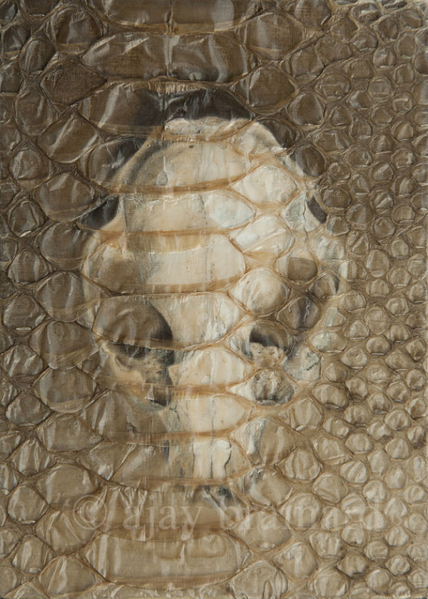 Trapped | oil and snake shed | 7x5 | Ajay Brainard