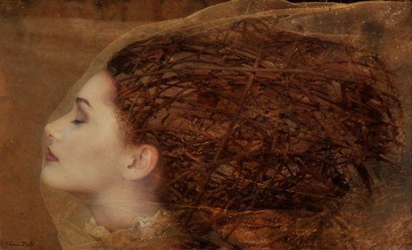 Behind the Veil | Thomas Dodd