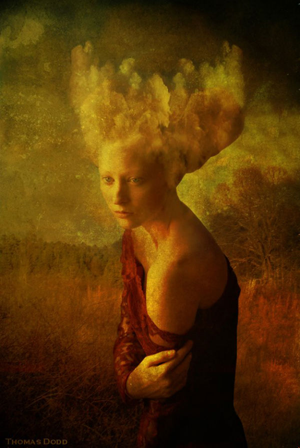 Head in the Clouds | Thomas Dodd | 2011
