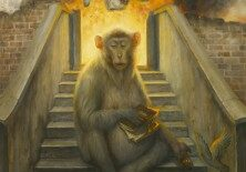 martin_wittfooth primate