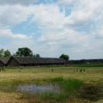 The Iron-Age Village of Biskupin: What You Can Expect to See