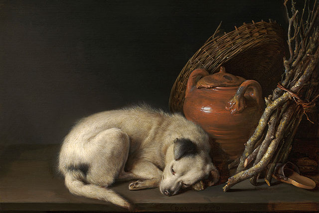 The Sleeping Dog, a Gerrit Dou painting