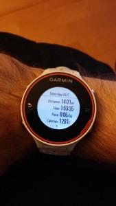 Garmin 620 Running Stats -- Achieving Millennial