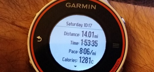 Garmin 620 Running Stats -- Achieving Millennial