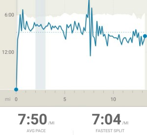 My pace through the race.
