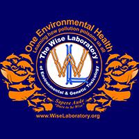 Wise Lab Logo