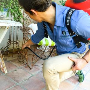 Bellator Pest Control expert treating for scorpions