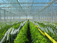 agriculture department, commercial pest control client in Arizona